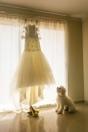 Vestido de Novia Barquisimeto